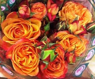 2012-01-Fiction-rose.jpg?mtime=20171003170750#asset:12826