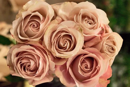 2013-02-Image-3-Bloomfield-Secret-Garden-Roses-Flowerona.jpg?mtime=20171003151735#asset:12553