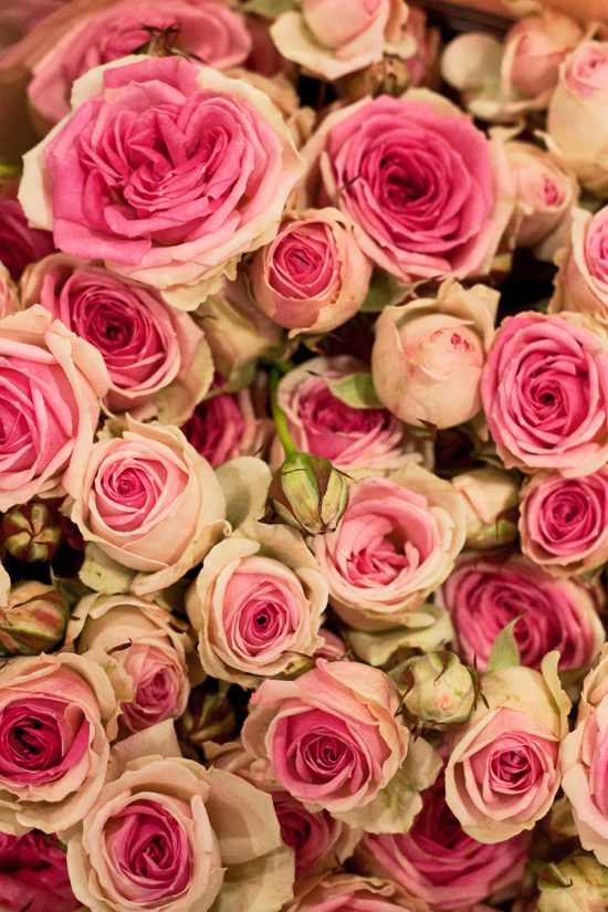 2013-02-Image-5-Bloomfield-Mimi-Eden-Spray-Roses-Flowerona.jpg?mtime=20171003151736#asset:12555