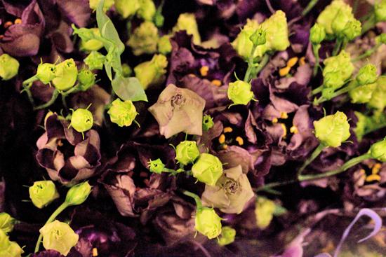 24-New-Covent-Garden-Flower-Market-Flowerona_170929_130933.jpg?mtime=20170929130933#asset:12177