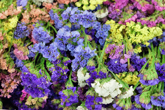 New-Covent-Garden-Flower-Market-August-Market-Report-Flowerona-9.jpg?mtime=20170913121118#asset:10095