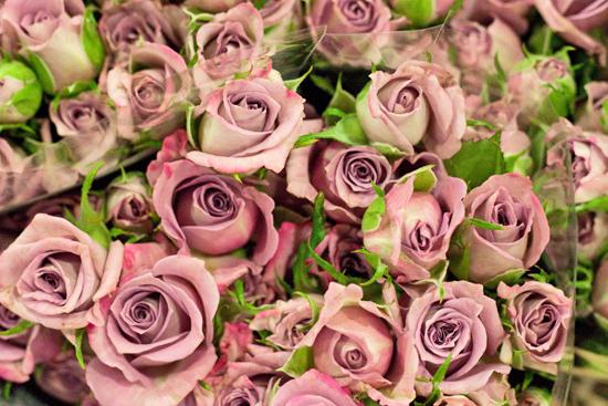 New-Covent-Garden-Flower-Market-January-2014-Flowerona-6.jpg?mtime=20170914105201#asset:10507