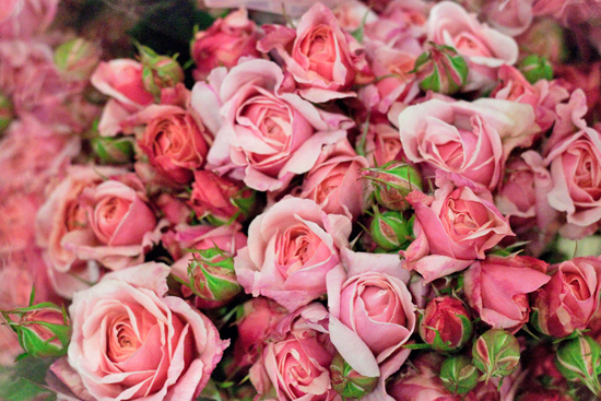 New-Covent-Garden-Flower-Market-July-Market-Report-Flowerona-2.jpg?mtime=20170913122420#asset:10141
