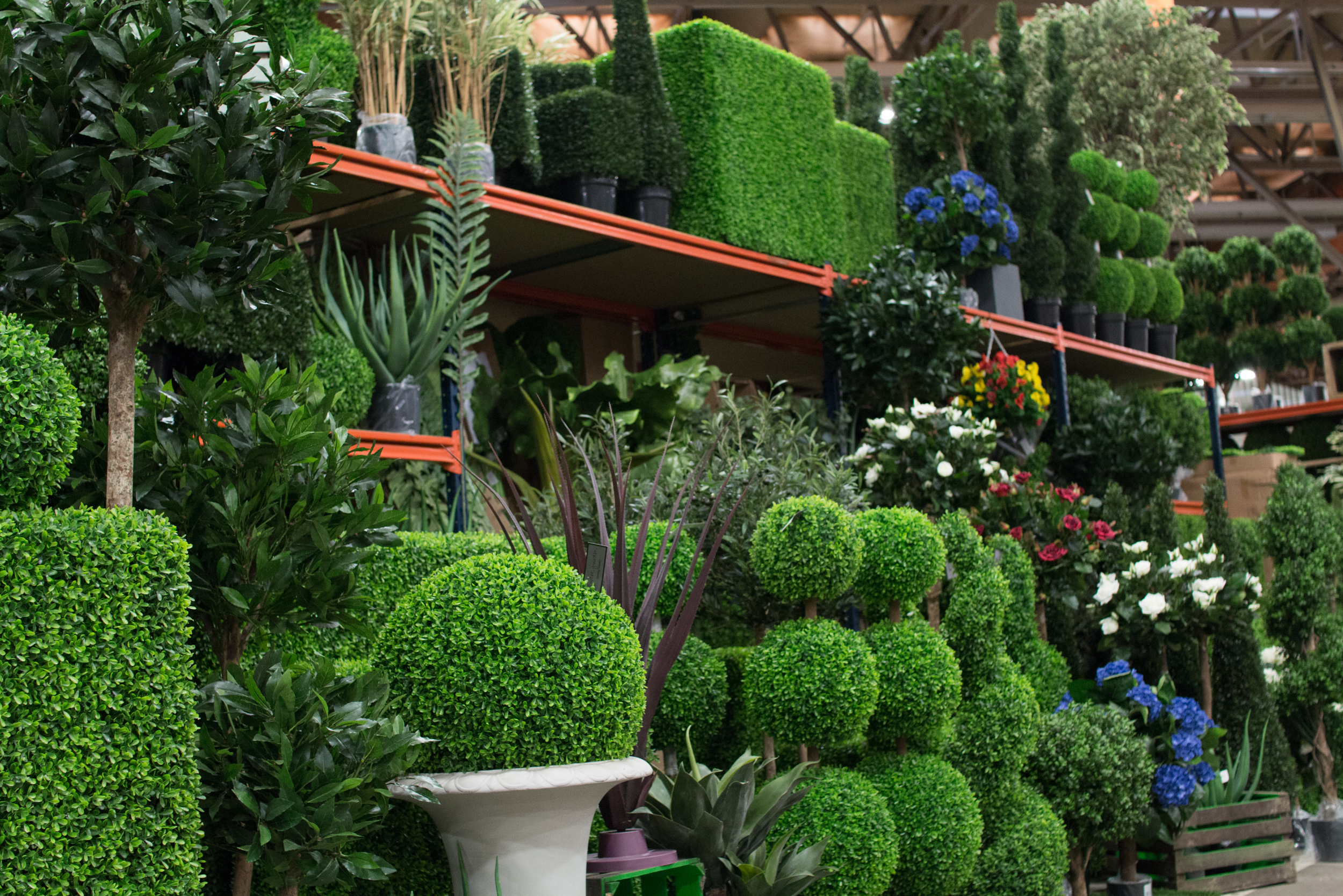 New Covent Garden Flower Market March 2016 Market Report Flowerona Hr 32