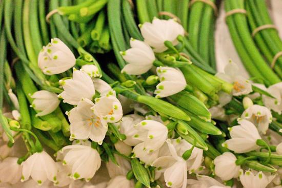 New-Covent-Garden-Flower-Market-March-Market-Report-Flowerona-6.jpg?mtime=20170913161844#asset:10381