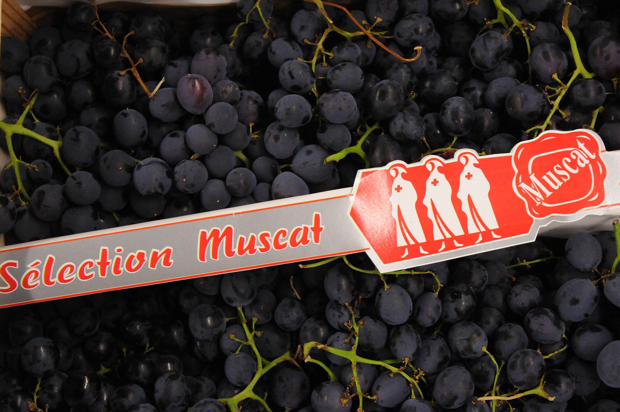 Muscat-grapes.jpg?mtime=20170922143125#asset:11516
