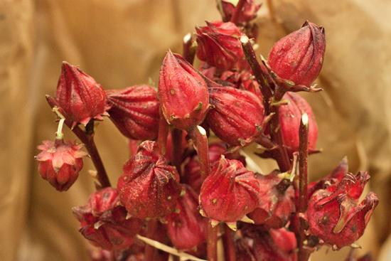 New-Covent-Garden-Flower-Market-November-Flowerona-21.jpg?mtime=20170928144558#asset:11935