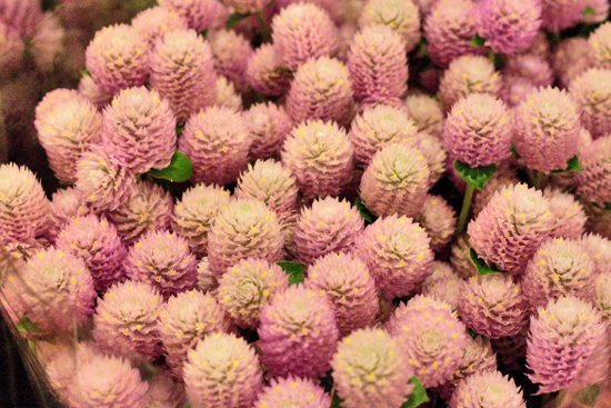 New-Covent-Garden-Flower-Market-Oct-2013-Flowerona-28.jpg?mtime=20170928151403#asset:12012