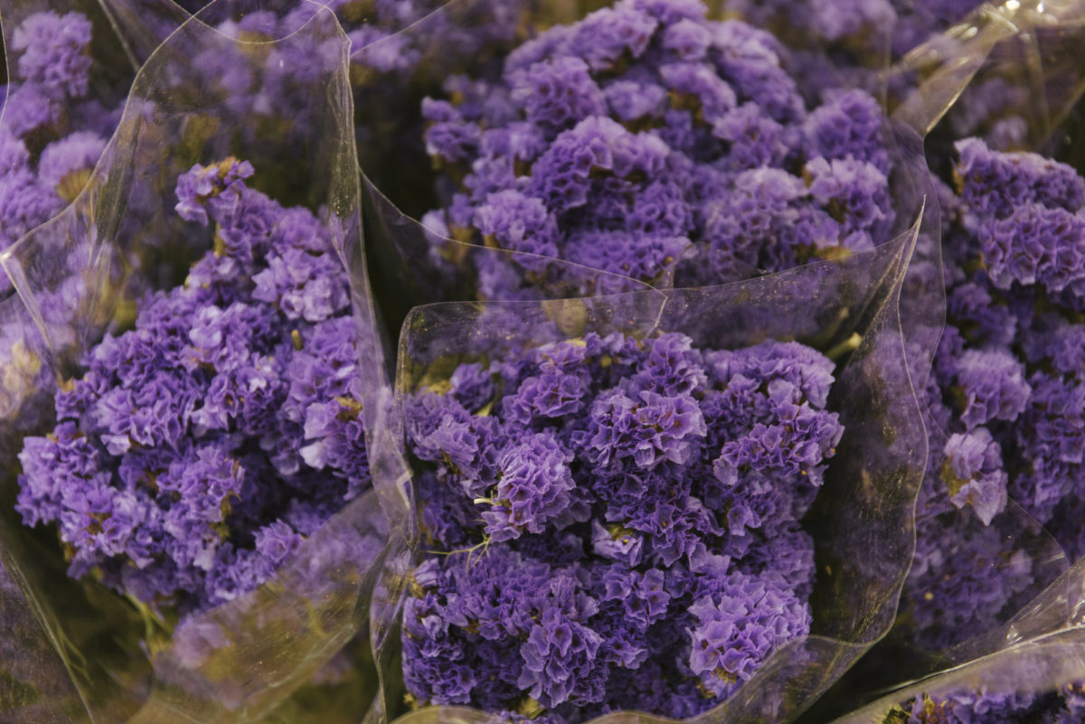 New Covent Garden Flower Market April 2019 A Florists Guide To Dried Flowers And Grasses Rona Wheeldon Flowerona Dried Purple Statice At Porters Foliage