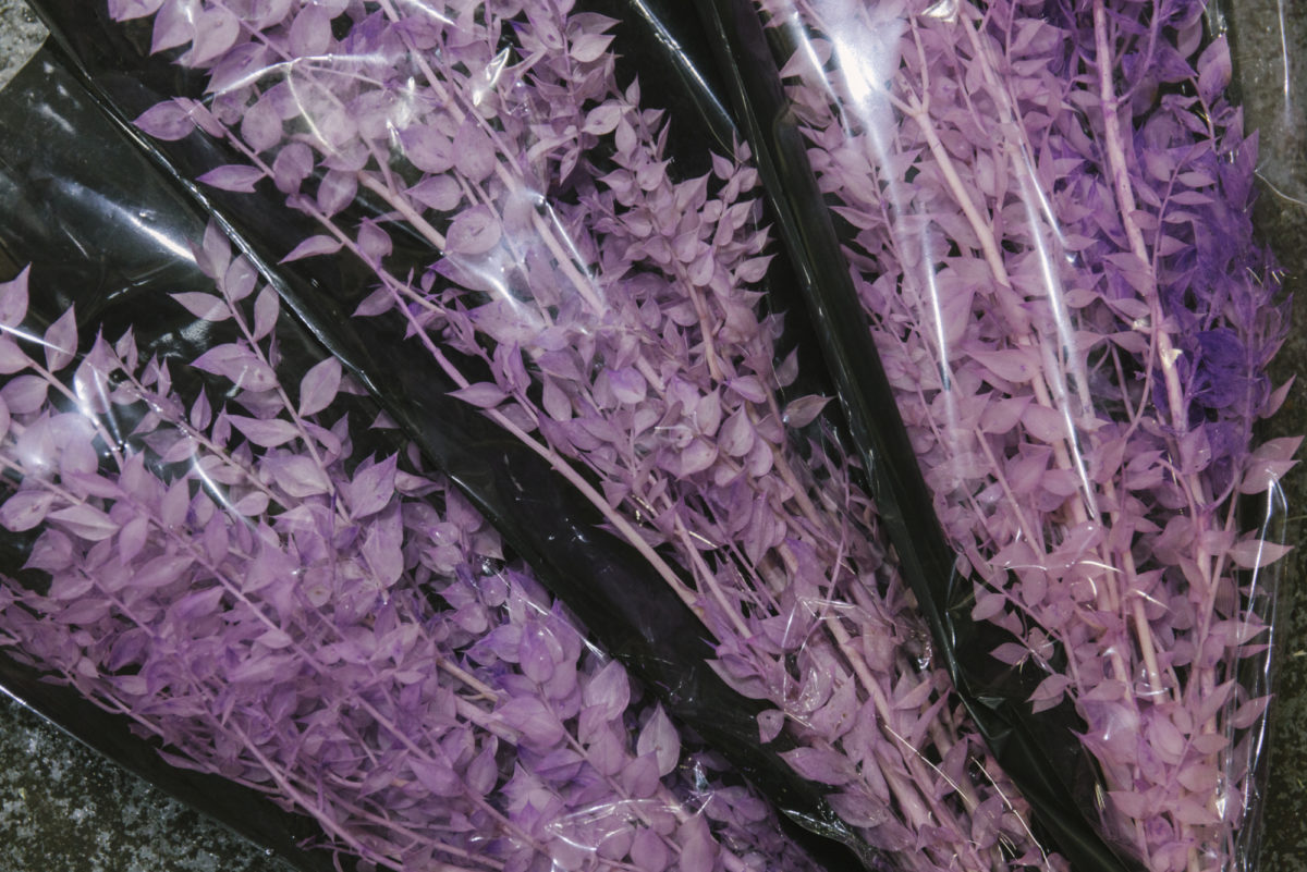 New Covent Garden Flower Market April 2019 A Florists Guide To Dried Flowers And Grasses Rona Wheeldon Flowerona Preserved Lilac Ruscus At Porters Foliage