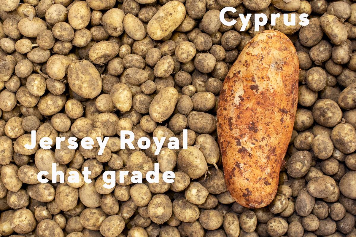 Fruit And Veg Market Report March 2019 Potato Varieties