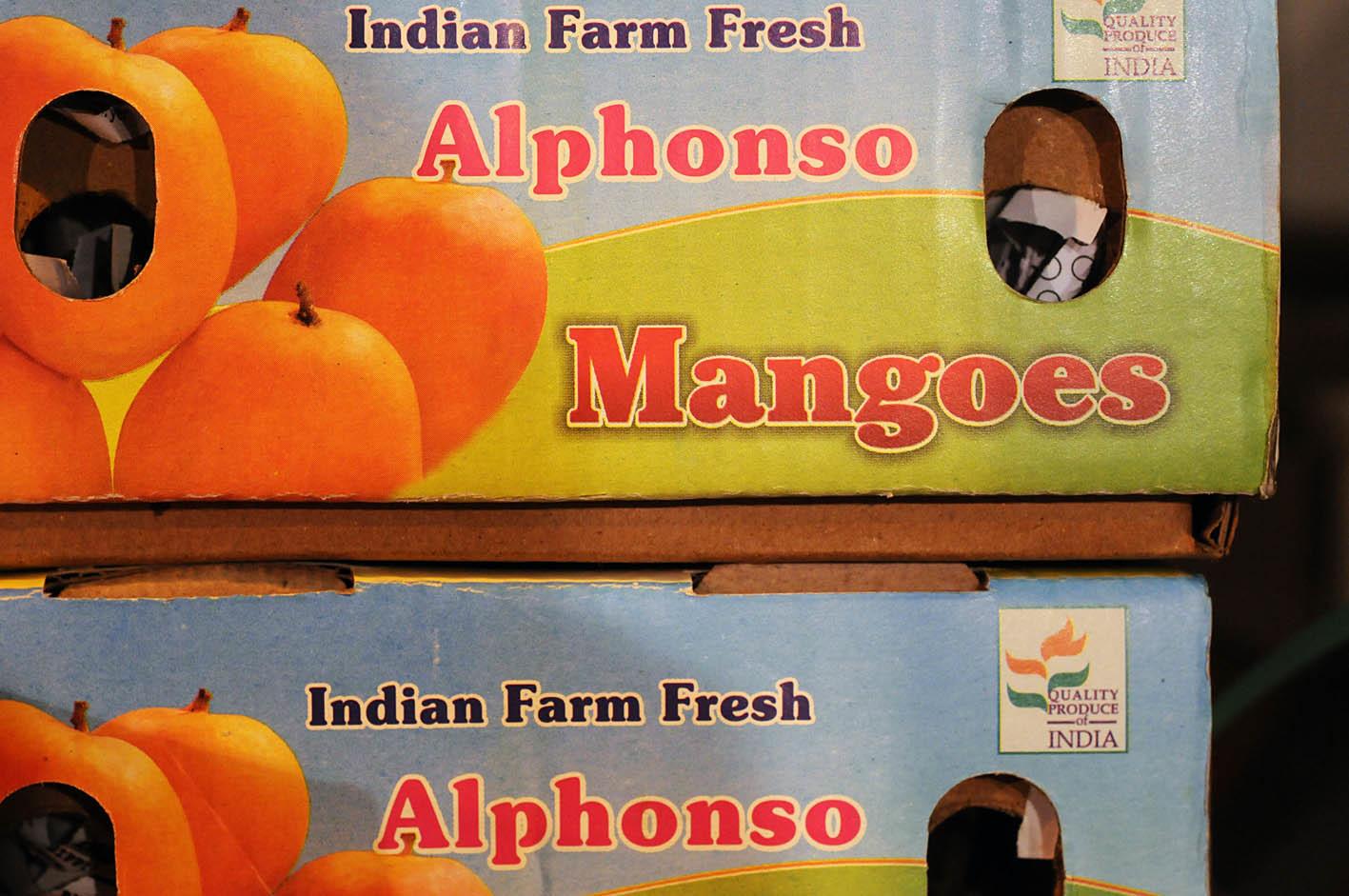 alphonso-mangoes.jpg?mtime=20170922143742#asset:11526