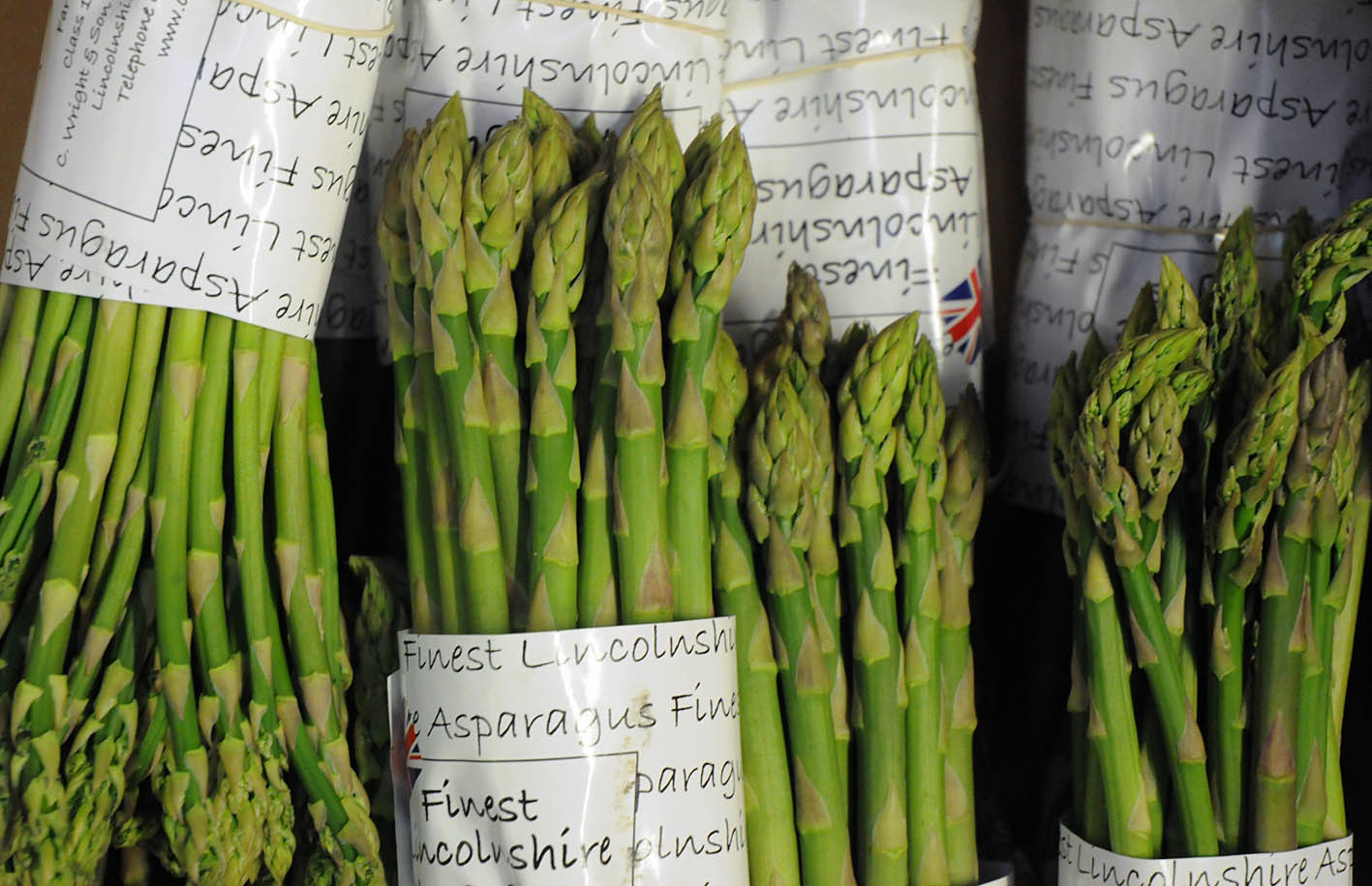 asparagus1.jpg?mtime=20170922143746#asset:11529