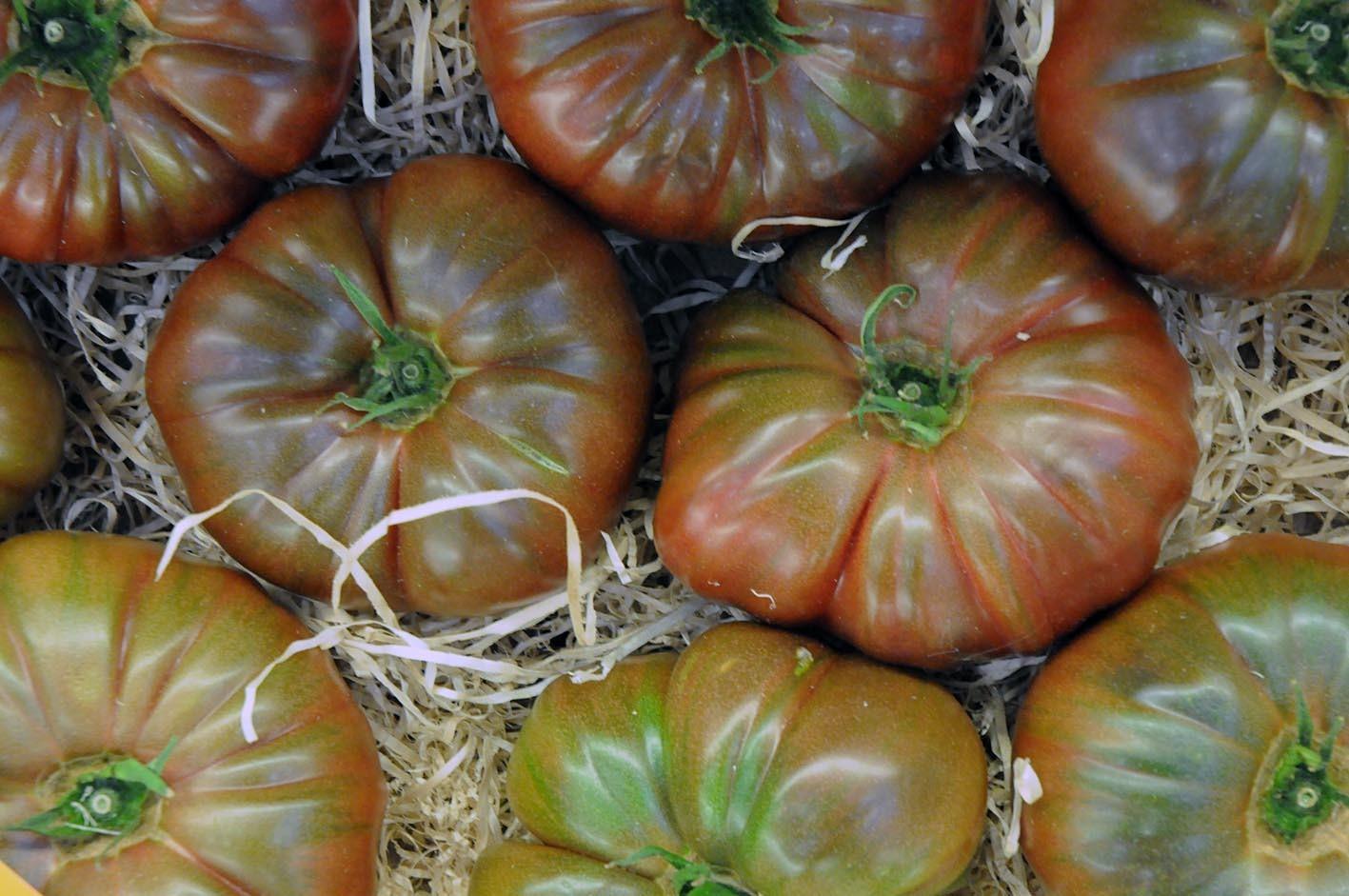 beefsteak-tomatoes.jpg?mtime=20170922143746#asset:11530