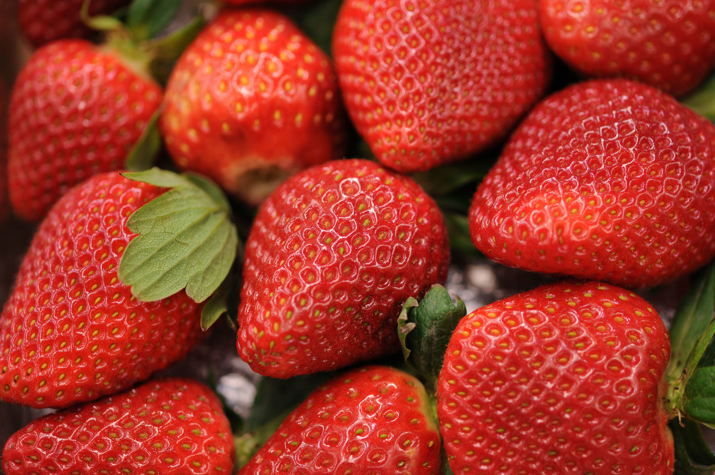 fruit-and-vegetable-market-report-february-2014-strawberries.jpg?mtime=20170922113431#asset:11355