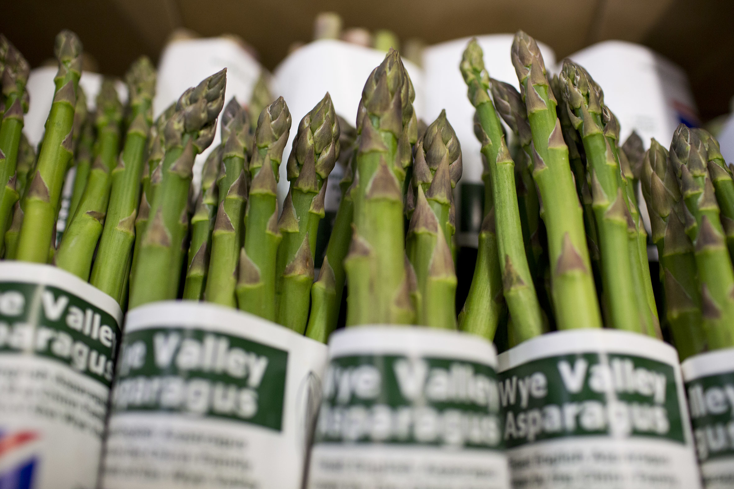 fruit-and-vegetable-market-report-march-2014-asparagus.jpg?mtime=20170922112622#asset:11322