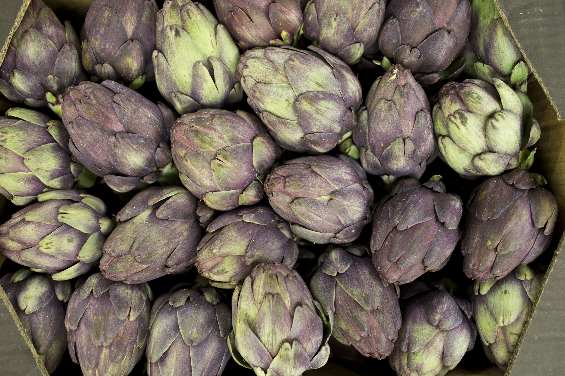 fruit-and-vegetable-market-report-march-2014-violet-artichokes.jpg?mtime=20170922112653#asset:11335