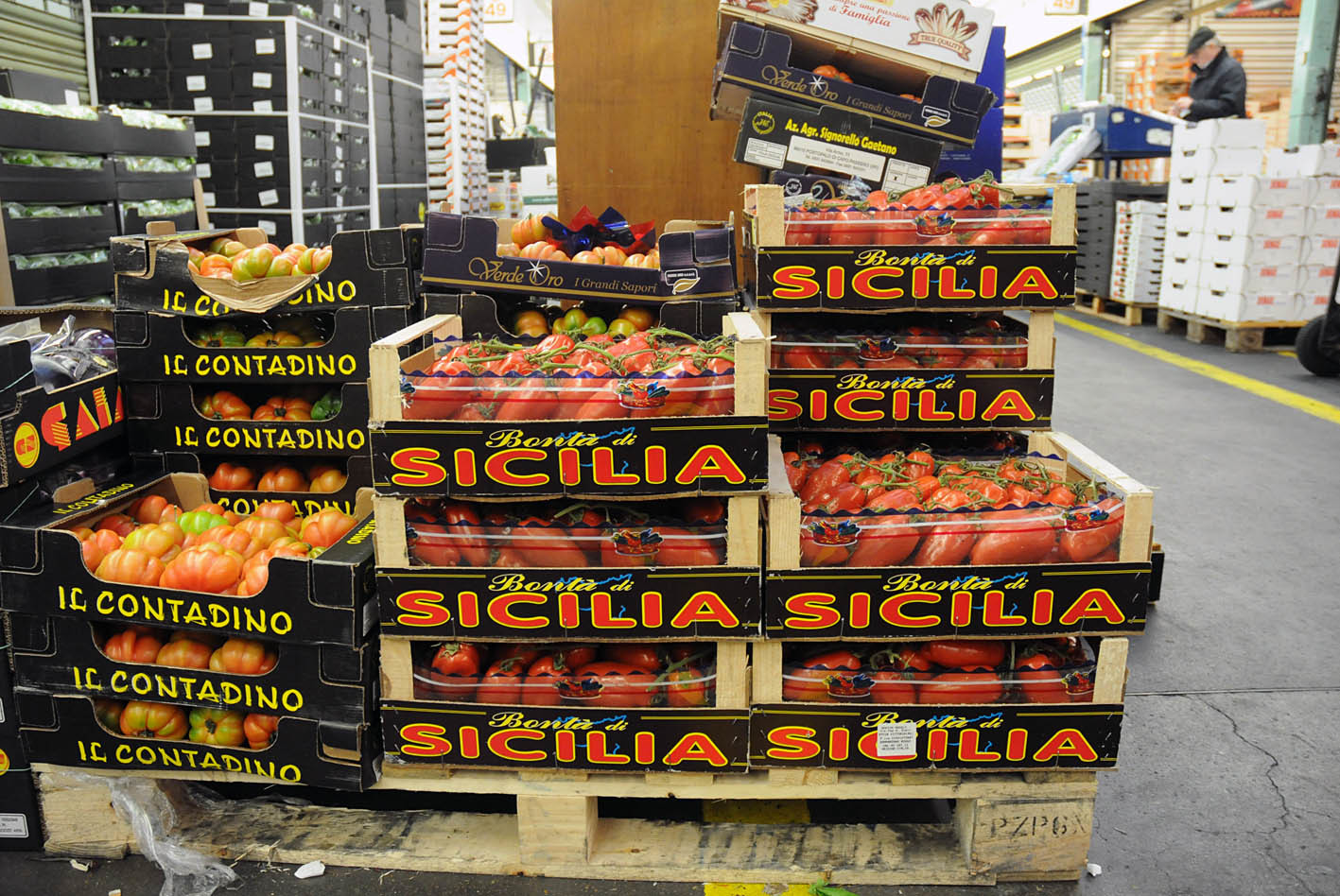 pallet-of-sicilian-tomatoes2.jpg?mtime=20170922143751#asset:11536
