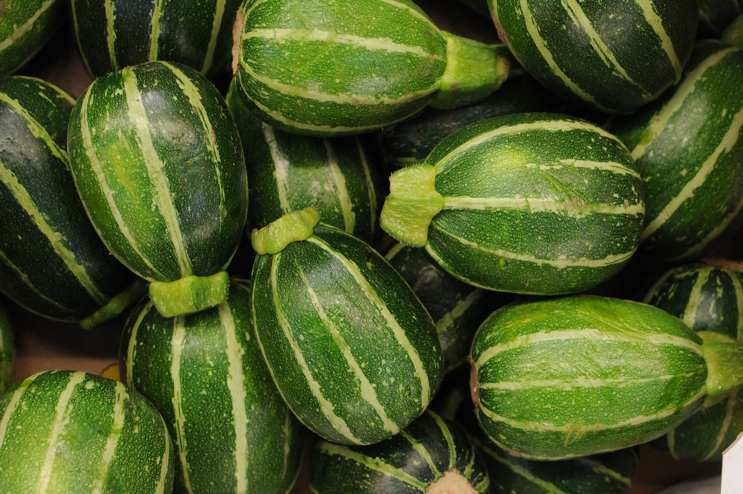 round_courgettes.jpg?mtime=20170922122217#asset:11452