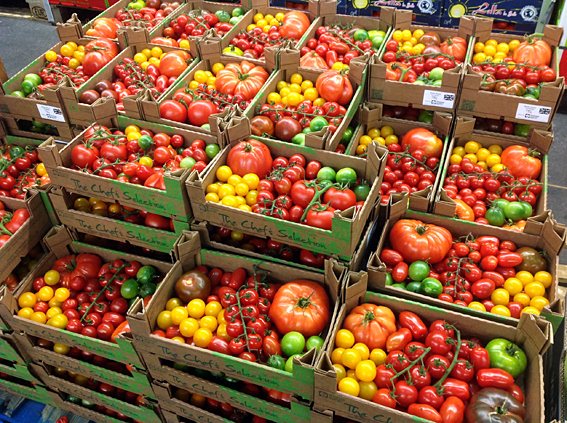 tomatoes.jpg?mtime=20170922114919#asset:11391