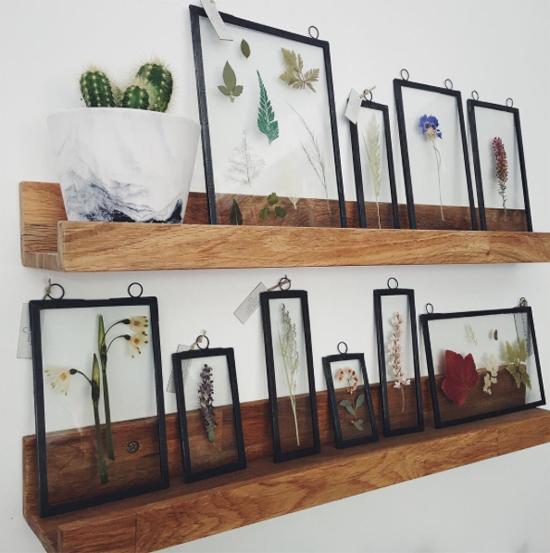New-Covent-Garden-Flower-Market-August-2016-Market-Report-Flowerona-Botanique-Workshop-3.jpg?mtime=20170719112124#asset:5065