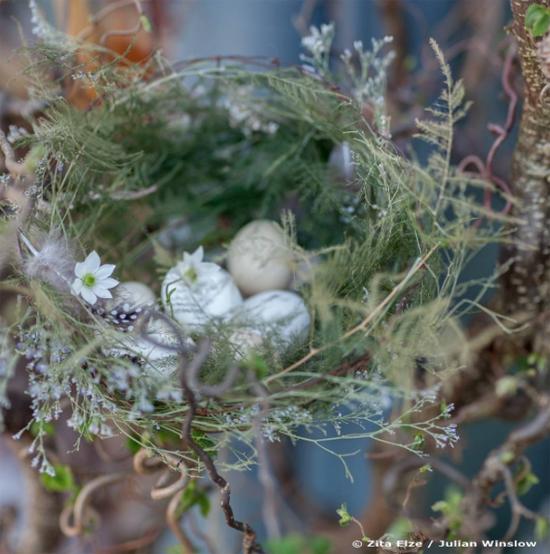 New-Covent-Garden-Flower-Market-August-2016-Market-Report-Flowerona-Zita-Elze.jpg?mtime=20170719112131#asset:5080