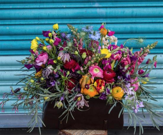New-Covent-Garden-Flower-Market-Product-Profile-Report-Nigella-June-2017-Rebel-Rebel.jpg?mtime=20170719102317#asset:5024