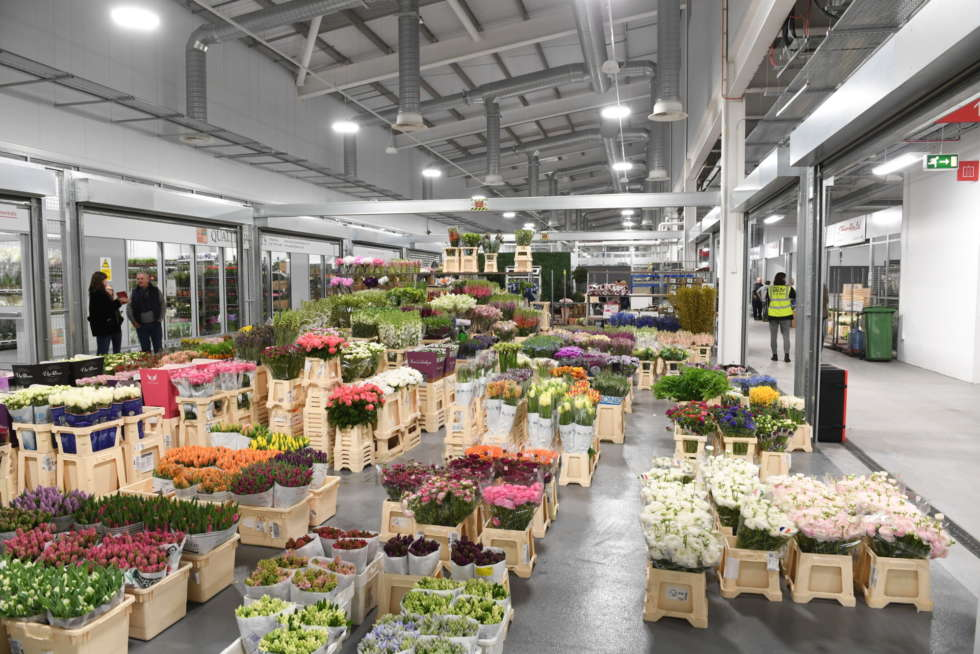 Join us for a Trade Open Day in the Flower Market on Wednesday 28 June