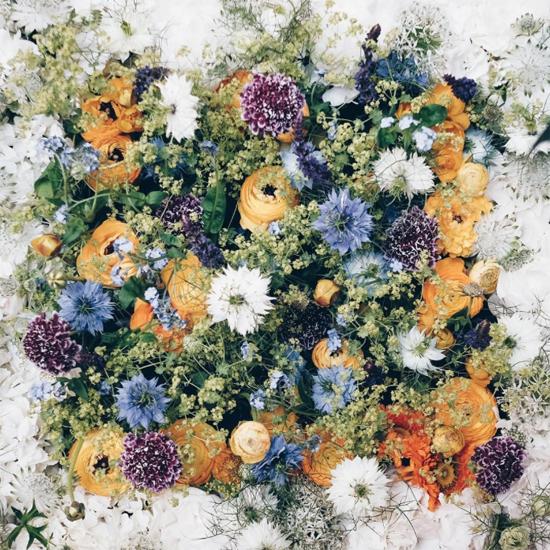 new-Covent-Garden-Flower-Market-Product-Profile-Report-Nigella-June-2017-JamJar-Flowers.jpg?mtime=20170719102315#asset:5019