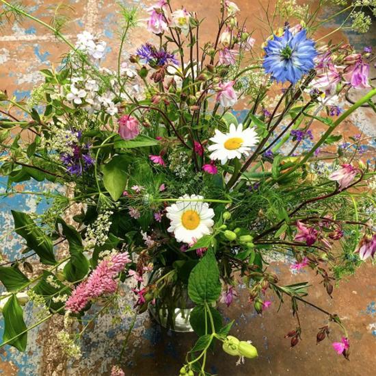 new-Covent-Garden-Flower-Market-Product-Profile-Report-Nigella-June-2017-Shane-Connolly.jpg?mtime=20170719102203#asset:5016