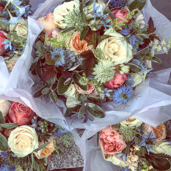 new-Covent-Garden-Flower-Market-Product-Profile-Report-Nigella-June-2017-The-Flower-Bird.jpg?mtime=20170719102319#asset:5028