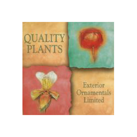 Quality Plants Exterior Ornamentals Ltd